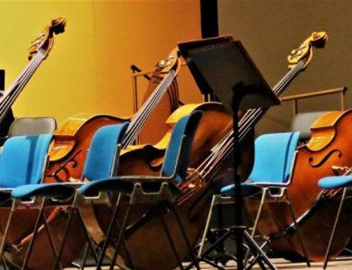 Clasificacion de los instrumentos de cuerda