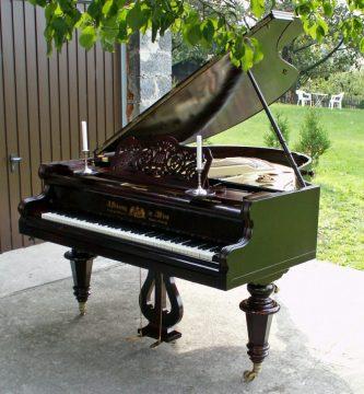 Instrumento cuerda percutida